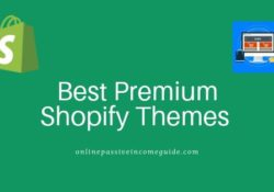 Best Premium Shopify Themes